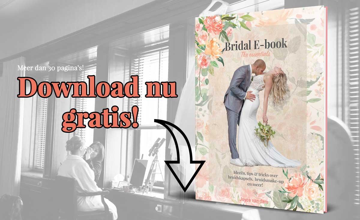 Aanvragen e-book Joyce van Dam